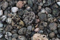 Rocce e lichene Immagine Stock Libera da Diritti
