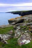 Rocce e scogliere, Caithness, Scozia del nord Immagini Stock Libere da Diritti