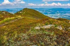Rocce e sentiero per pedoni sul prato dell'alta montagna Immagini Stock