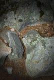 Rocce e vegetazione guasto Fotografie Stock Libere da Diritti