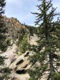 Rocce ed alberi in parco nazionale Fotografia Stock