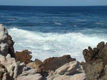 Rocce ed oceano Immagine Stock Libera da Diritti