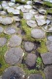 Rocce esagonali alla strada soprelevata di Giants, Irlanda del Nord Immagini Stock Libere da Diritti