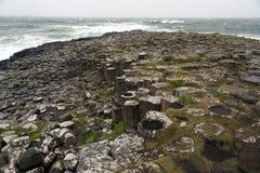 Rocce esagonali alla strada soprelevata di Giants, Irlanda del Nord Immagine Stock