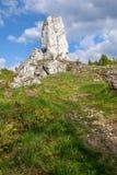 Rocce giurassiche del calcare - Giura polacco Fotografie Stock