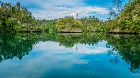Rocce invase con Palmtrees in baia nascosta su Gam Island vicino a Kabui ed al passaggio Papuan ad ovest, Raja Ampat, Indonesia Immagine Stock Libera da Diritti