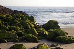 Rocce muscose verdi sulla costa Fotografie Stock Libere da Diritti