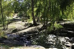 Rocce nel fiume Fotografia Stock