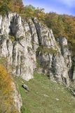 Rocce nel parco nazionale di Ojcow in Polonia Vista della natura di autunno Immagine Stock Libera da Diritti