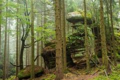 Rocce nella foresta Immagini Stock Libere da Diritti