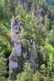 Rocce nella montagna dell'alpe Immagini Stock