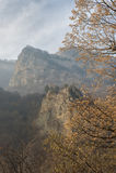 Rocce nelle montagne in una foschia nebbiosa con l'autunno, foglie dorate sugli alberi nella priorità alta Immagini Stock