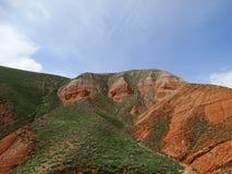 Rocce rosse invase con erba verde Fotografia Stock