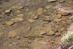 Rocce subacquee Immagini Stock Libere da Diritti