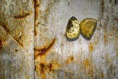 Rocce sulla lamina di metallo arrugginita Fotografie Stock Libere da Diritti