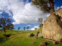 Rocce, treees e pascolo Fotografia Stock