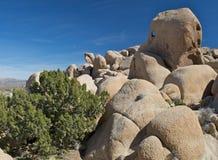 Rocce Weatherbeaten del deserto immagini stock libere da diritti