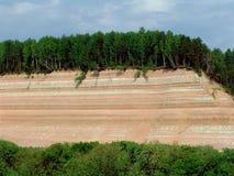 Roccia 1 della foresta Fotografie Stock