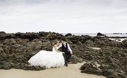 Roccia abbracciata matrimonio Fotografie Stock Libere da Diritti