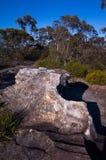Roccia angolare in Bush australiano Fotografia Stock Libera da Diritti