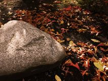 Roccia in autunno Fotografia Stock Libera da Diritti