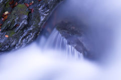 Roccia bagnata in autunno fotografia stock