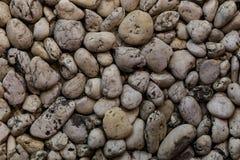 Roccia bianca sulla terra Fotografia Stock Libera da Diritti