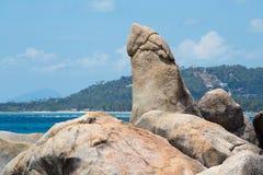 Roccia bizzarra, hin yai, punto di riferimento molto famoso di tum del hin di Samui, Tailandia Fotografia Stock Libera da Diritti