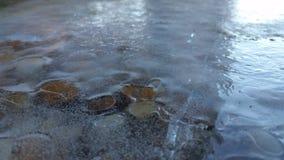 Roccia congelata fotografia stock libera da diritti
