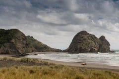Roccia del coniglio alla spiaggia di Piha veduta dalle dune Fotografie Stock