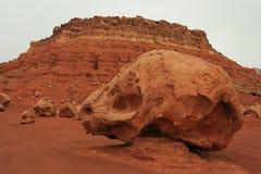 Roccia del cranio Immagini Stock Libere da Diritti