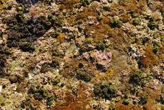 Roccia del mare Fotografia Stock