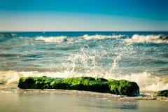 Roccia del mare Fotografie Stock