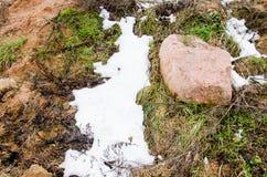 Roccia del mare Roccia dell'oceano Roccia della spiaggia Roccia della natura Il muschio si sviluppa su roccia Grande roccia Liche Fotografie Stock