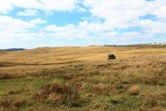 Roccia del paesaggio del paese Fotografia Stock