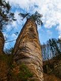 Roccia dell'arenaria con il piccolo pino sulla cima Fotografia Stock Libera da Diritti