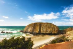Roccia della guarnizione sulla costa dell'Oregon Fotografie Stock Libere da Diritti