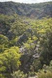 Roccia della pagoda nel parco nazionale blu delle montagne Fotografie Stock