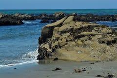Roccia della spiaggia Immagine Stock