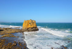 Roccia della Tabella in Eagle Point Marine Sanctuary Immagine Stock Libera da Diritti