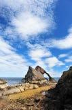 Roccia delle fiddle dell'arco a bassa marea fotografia stock libera da diritti