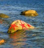 Roccia delle stelle marine Immagine Stock