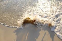 Roccia di colpo dell'onda della spiaggia immagini stock libere da diritti