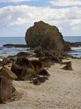 Roccia di Currumbin Fotografia Stock Libera da Diritti