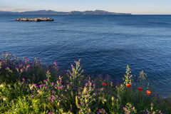 Roccia di EL e dei Wildflowers Cargol. L'Escala. Costa Brava. La Spagna Fotografia Stock Libera da Diritti