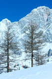 Roccia di inverno con neve caduta fresca sulla cima. Fotografia Stock Libera da Diritti