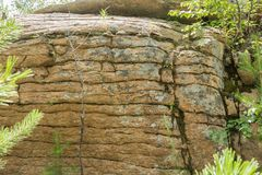 Roccia di pietra nella foresta Fotografia Stock