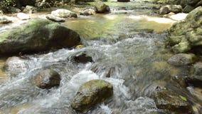 Roccia di scorrimento e di colpo del fiume sulla cataratta in foresta archivi video