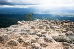 Roccia di sforzo con la nuvola e la foresta Fotografie Stock Libere da Diritti