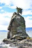 Roccia di Siwash immagini stock